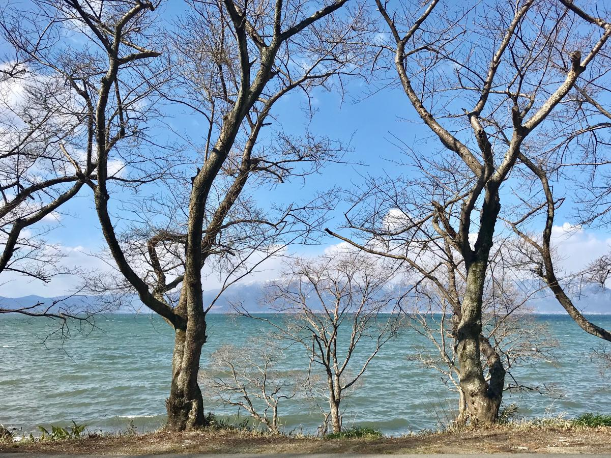 近江八幡市からの琵琶湖