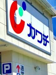カワチ薬品 常陸太田店