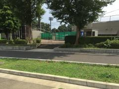 秦野市中央運動公園野球場