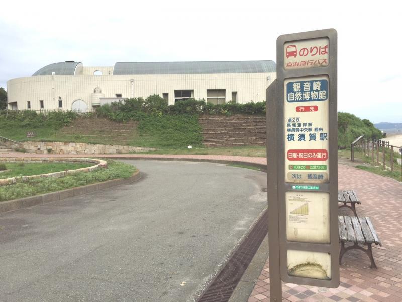 「観音崎自然博物館」バス停留所