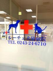 ルーチェ犬猫病院