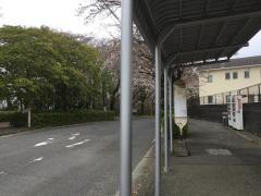 「秦野総合高校前」バス停留所