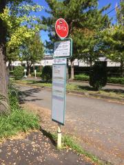 「稲永スポーツセンター」バス停留所