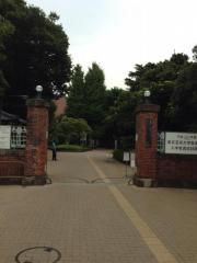 東京芸術大学上野キャンパス