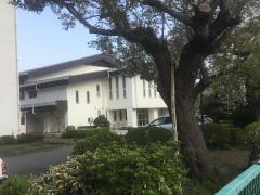 相陽中学校