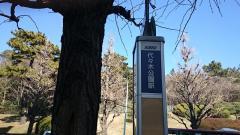 「代々木公園駅」バス停留所
