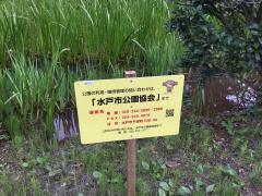 弁財天池緑地