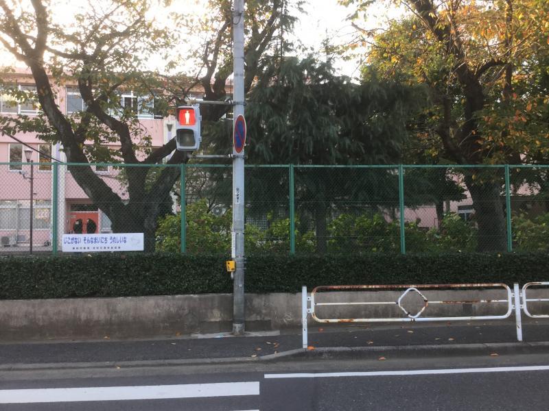 大学 付属 小学校 埼玉