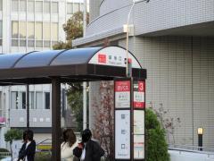 「築地口」バス停留所