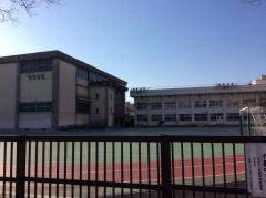 寺島中学校