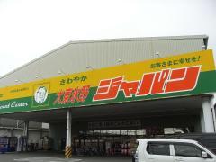 ジャパン 大東氷野店
