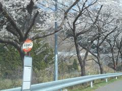 「夕日谷口」バス停留所
