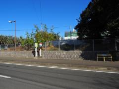 「ヘルストピア延岡」バス停留所