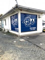 吉田犬猫病院