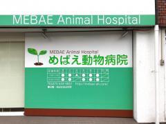 めばえ動物病院