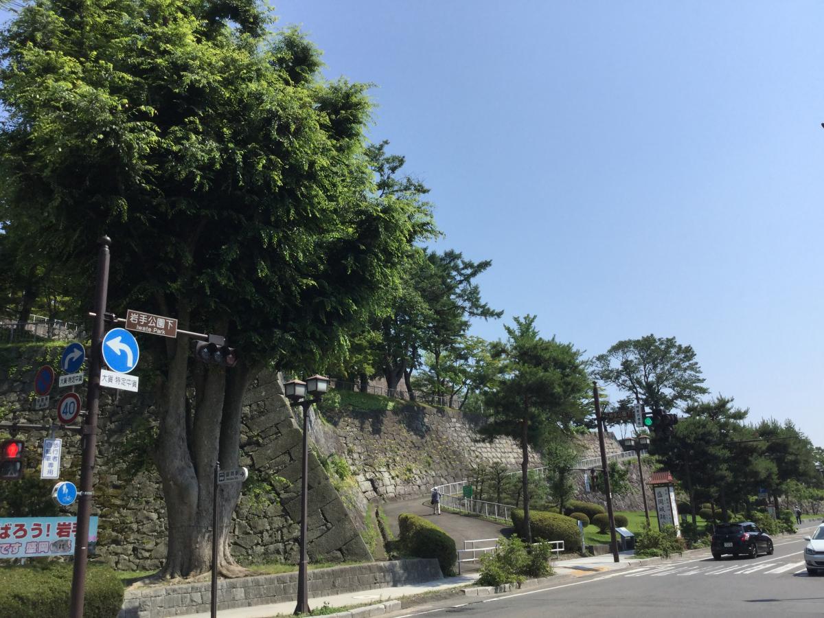 盛岡城跡(岩手公園)