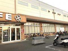 ライフ 鎌倉大船モール店