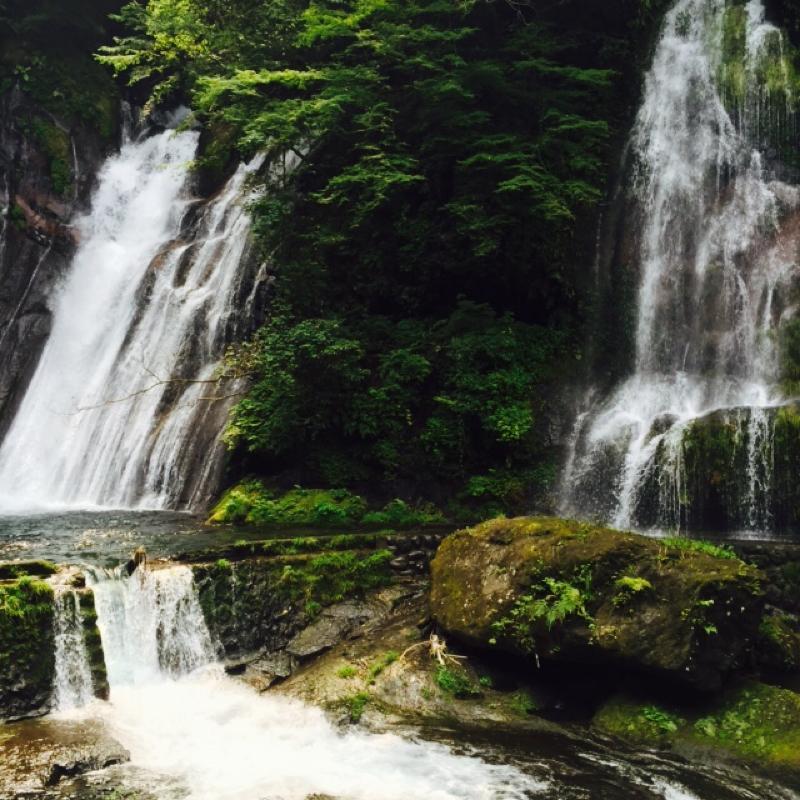 涼しい滝です