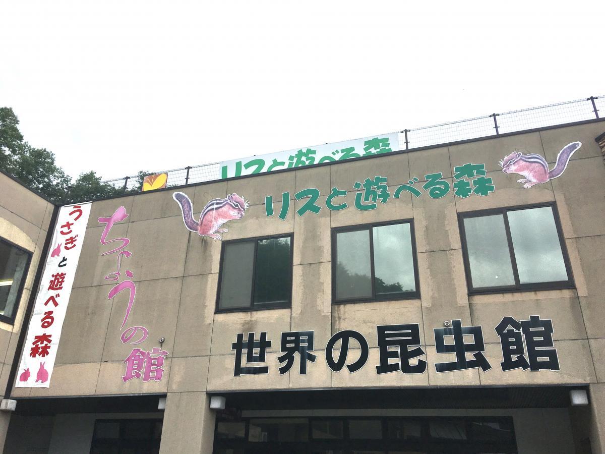 施設の2階部分の外壁です。