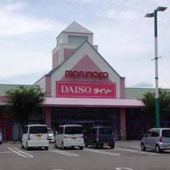 ザ・ダイソー マルナカ南国店