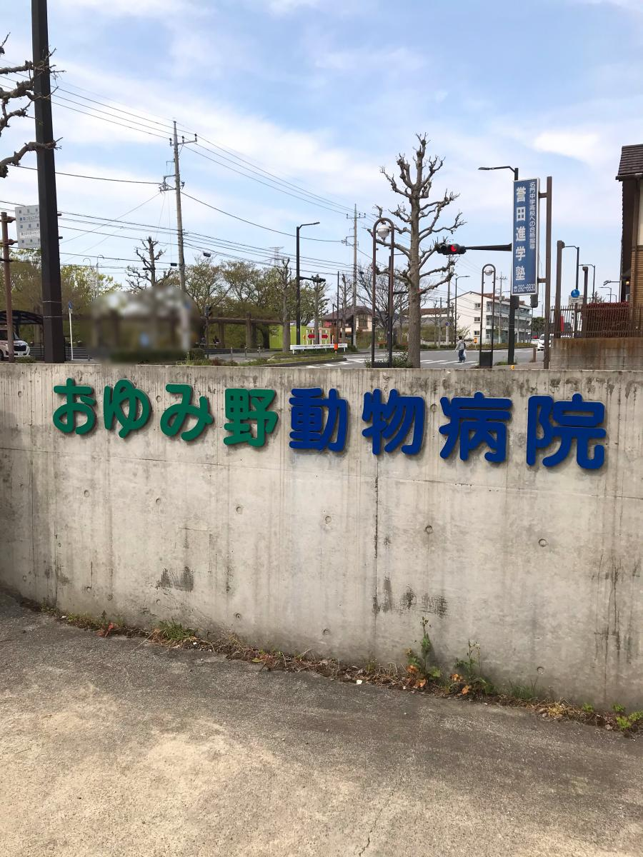 進学 塾 誉田