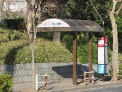 「西山小学校」バス停留所