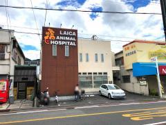 ライカ動物病院