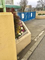 上宿小学校