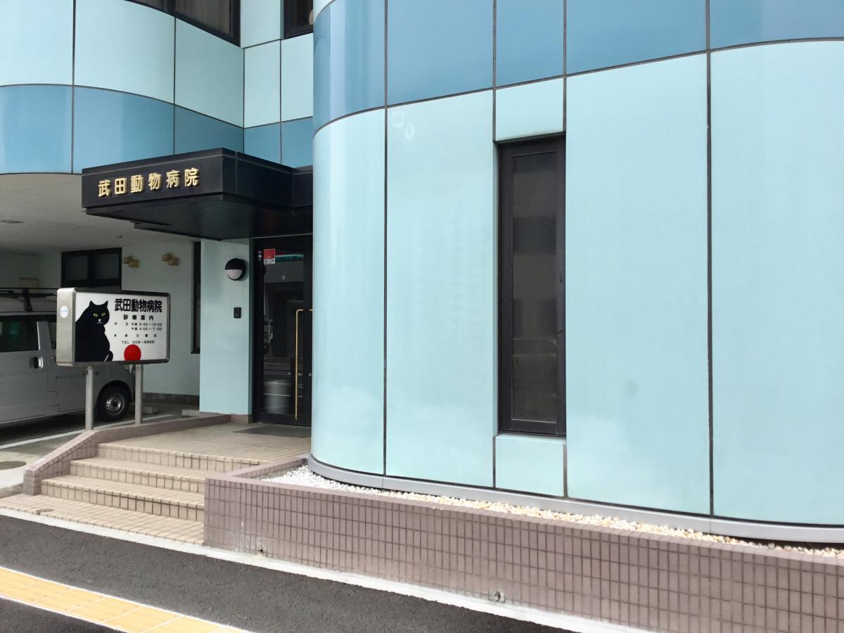 武田動物病院です。