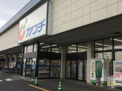カワチ薬品 川尻店