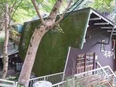 川魚専門レストラン千早川