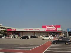 マックスバリュ 西の土居店