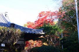 等弥神社(能登の宮)