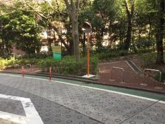 島田生長の森緑地