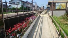 太郎丸エンゼルランド駅