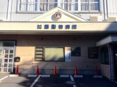 加藤動物病院