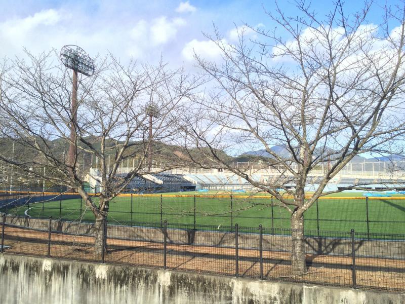 西ヶ谷総合運動場西ヶ谷野球場