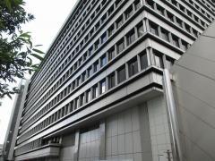 三菱自動車工業株式会社