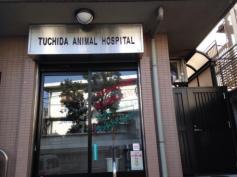 土田動物病院